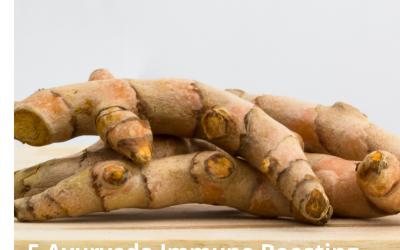 5 Immune Boosting Ayurveda Herbs